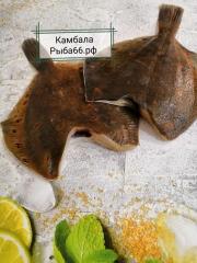 Камбала Мурманск б/г 1 шт 0,3-0,5 кг